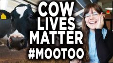 gender studies feminist says mil 1 232x130 - Gender Studies Feminist Says Milking Cows Is Now Animal Abuse